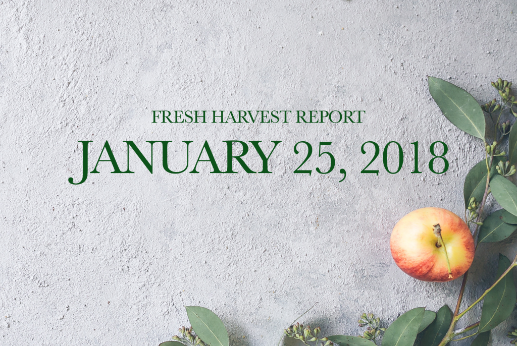 1/25/18 Fresh Harvest Report