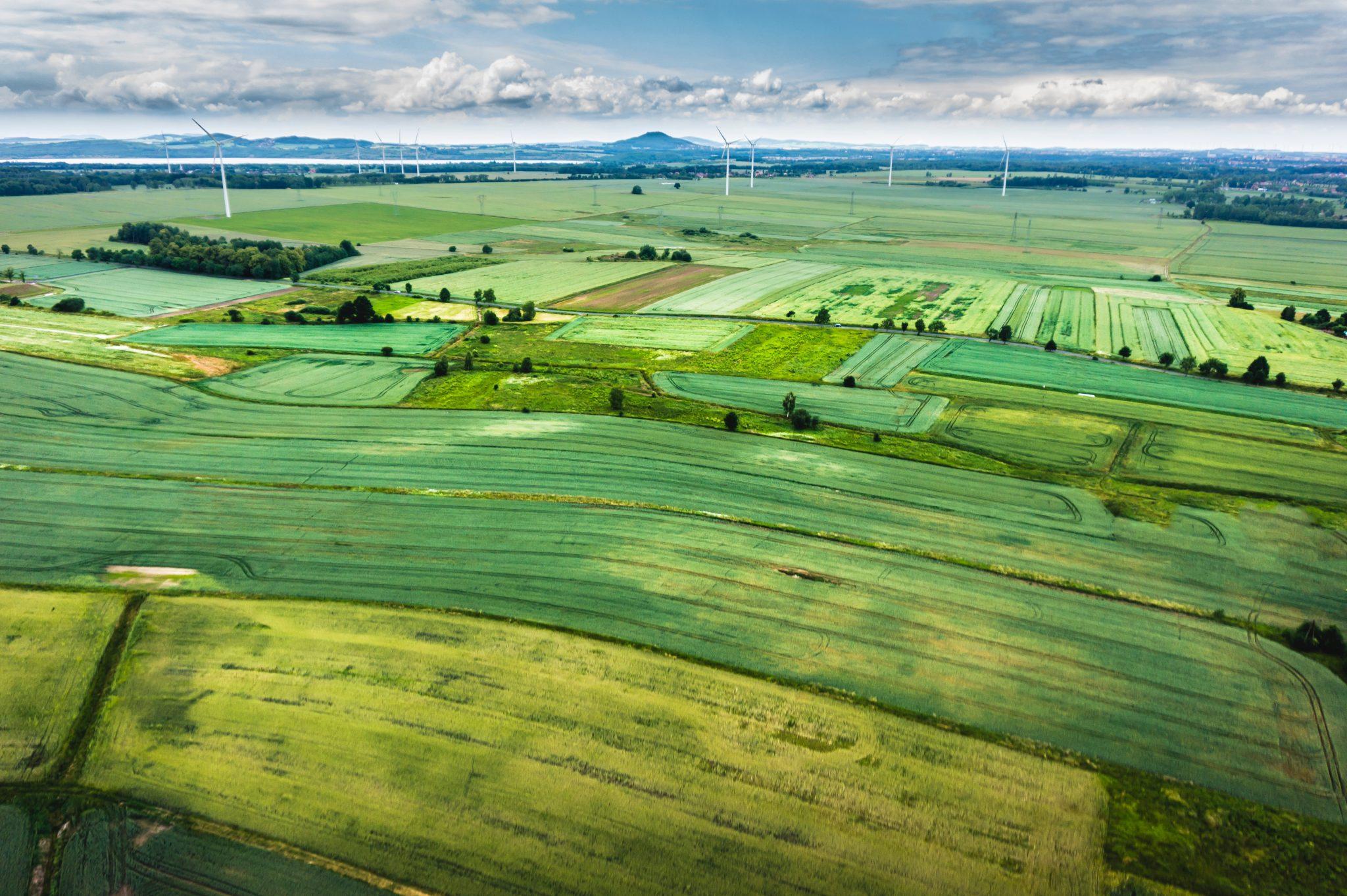 Greener Fields Together