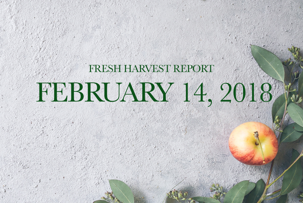 2/14/18 Fresh Harvest Report