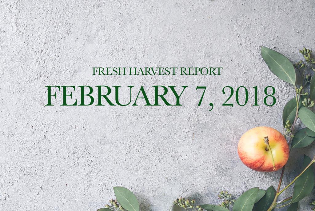 2/7/18 Fresh Harvest Report