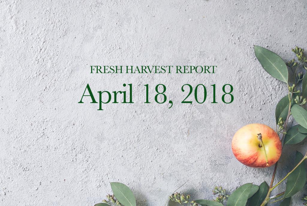 4/18/18 Fresh Harvest Report