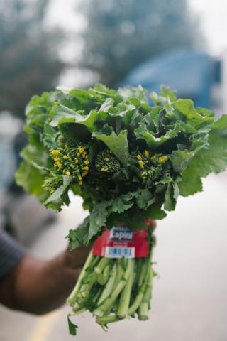 Broccoli Rapini