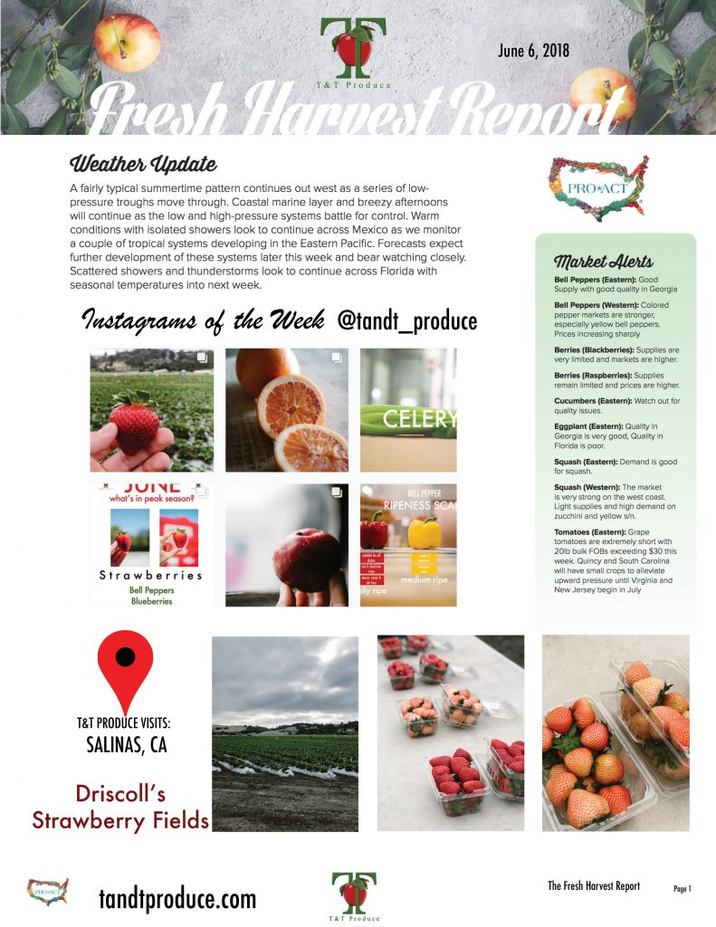 6/6/18 Fresh Harvest Report