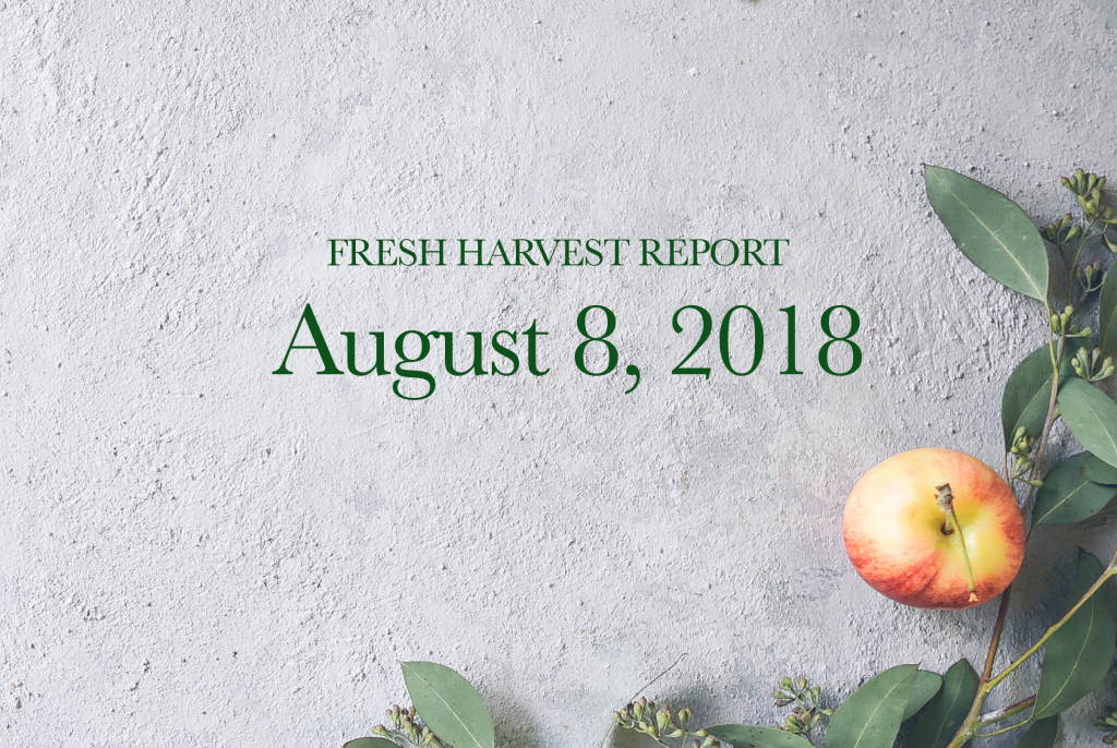 8/08/18 Fresh Harvest Report