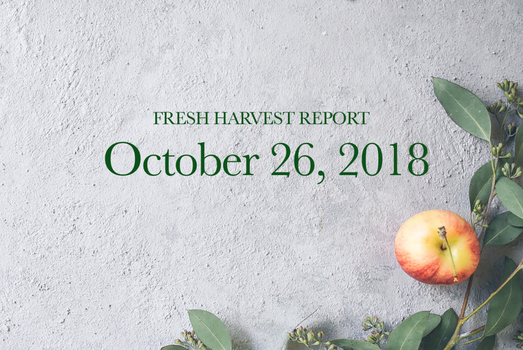 10/26/18 Fresh Harvest Report