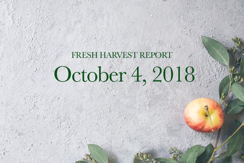 10/04/18 Fresh Harvest Report