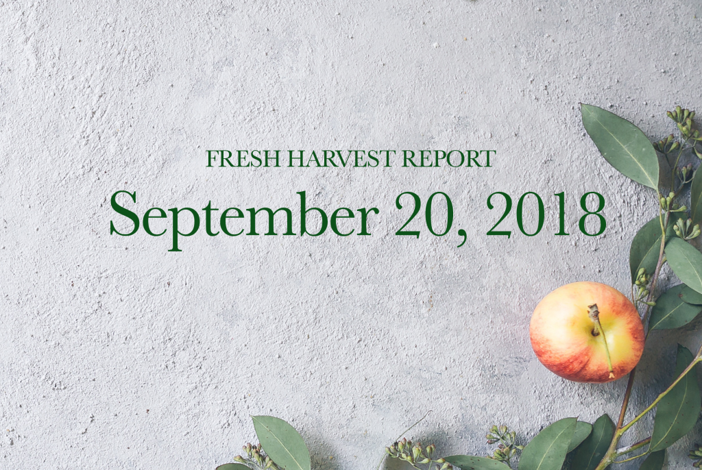 09/20/18 Fresh Harvest Report