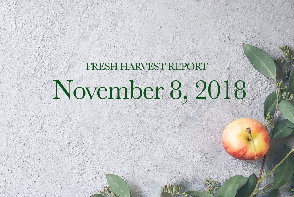 11/8/18 Fresh Harvest Report
