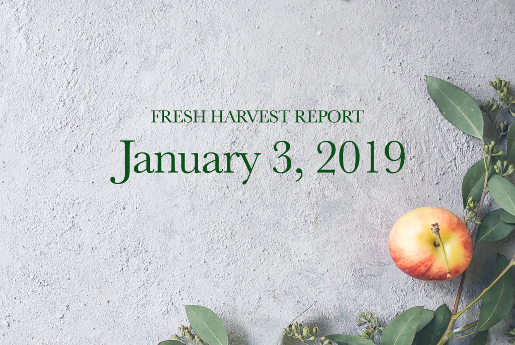1/3/19 Fresh Harvest Report