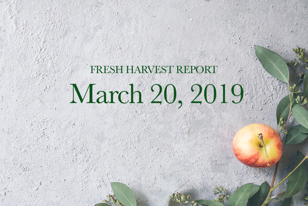 3/20/19 Fresh Harvest Report